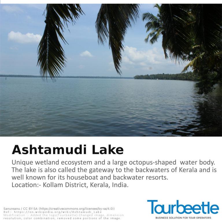 Astamudi_Lake
